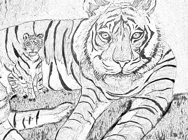 Level 3 Tigers